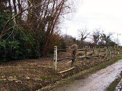 Le terrain en 2008